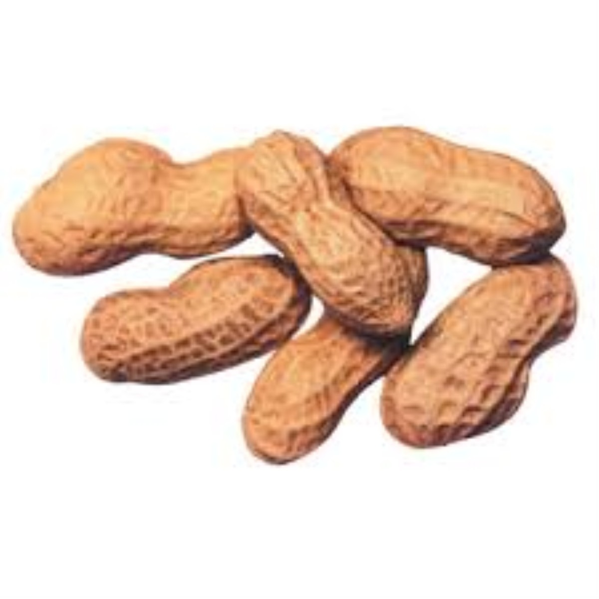 Peanut allergy breakthrough welcomed in East Lancs