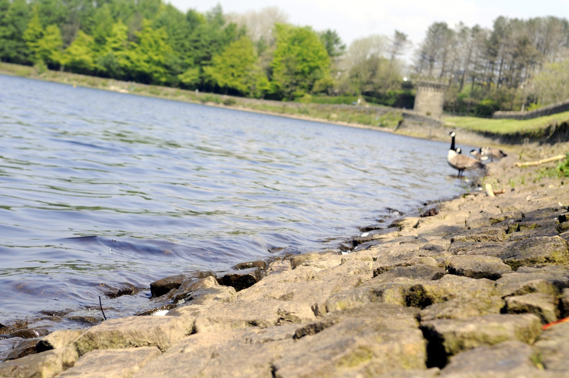 Man rescued from Entwistle Reservoir