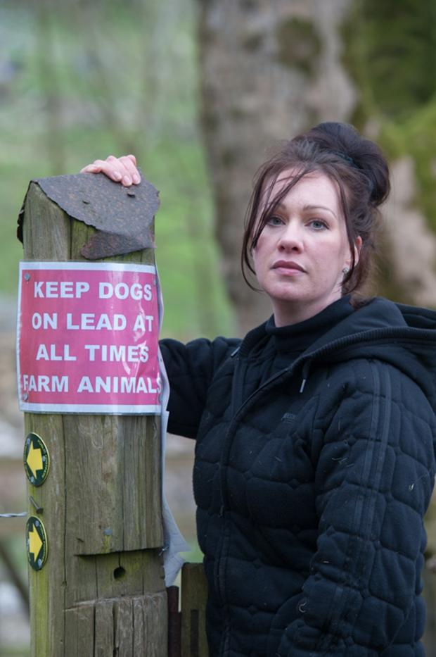 Blackburn Citizen: East Lancs farmer horrified after finding 'gruesomely' savaged sheep